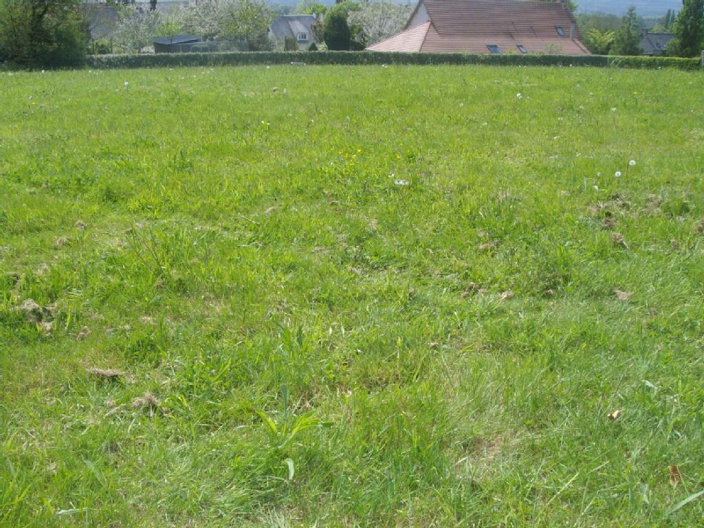 Terrains du constructeur REZOXIMO • 988 m² • OUISTREHAM