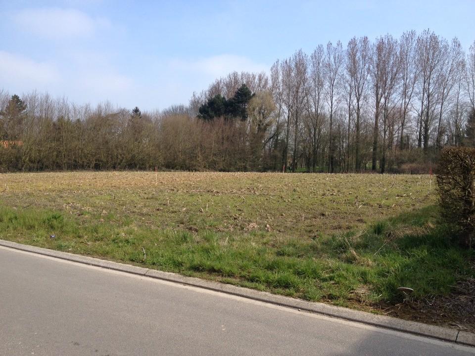 Terrains du constructeur MAISONS FRANCE CONFORT • 617 m² • MOUCHIN