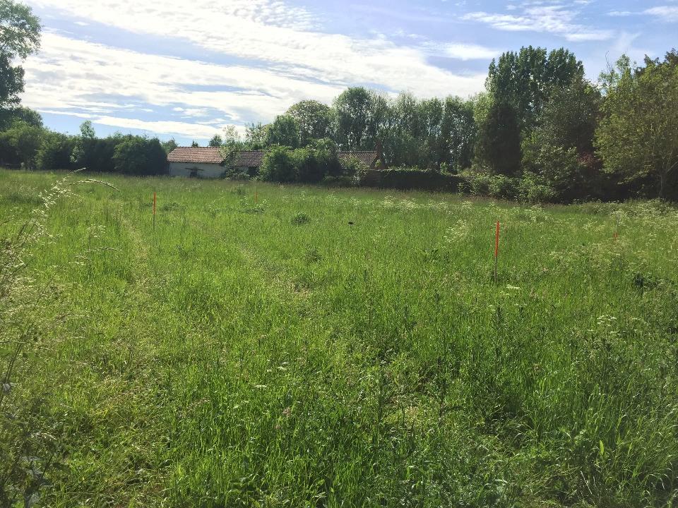 Terrains du constructeur MAISONS FRANCE CONFORT • 529 m² • MERRIS