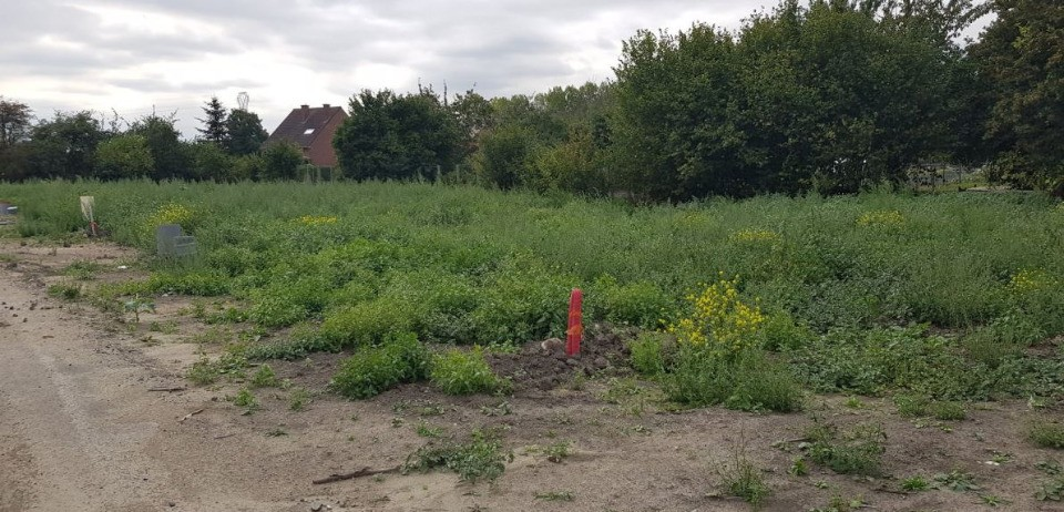 Terrains du constructeur MAISONS FRANCE CONFORT • 467 m² • HERIN