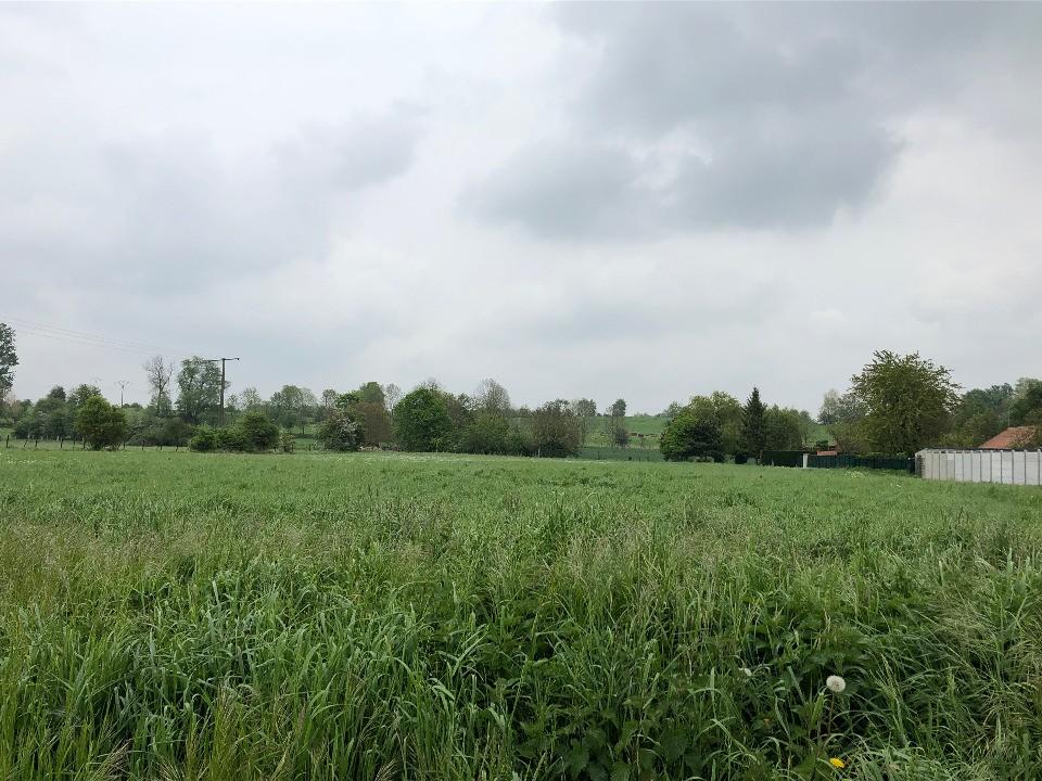 Terrains du constructeur MAISONS FRANCE CONFORT • 540 m² • MARLY