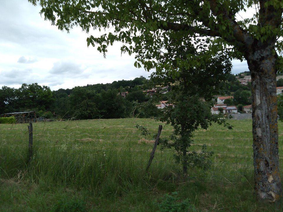 Terrains du constructeur MAISONS FRANCE CONFORT • 800 m² • SAINT BENOIT DE CARMAUX