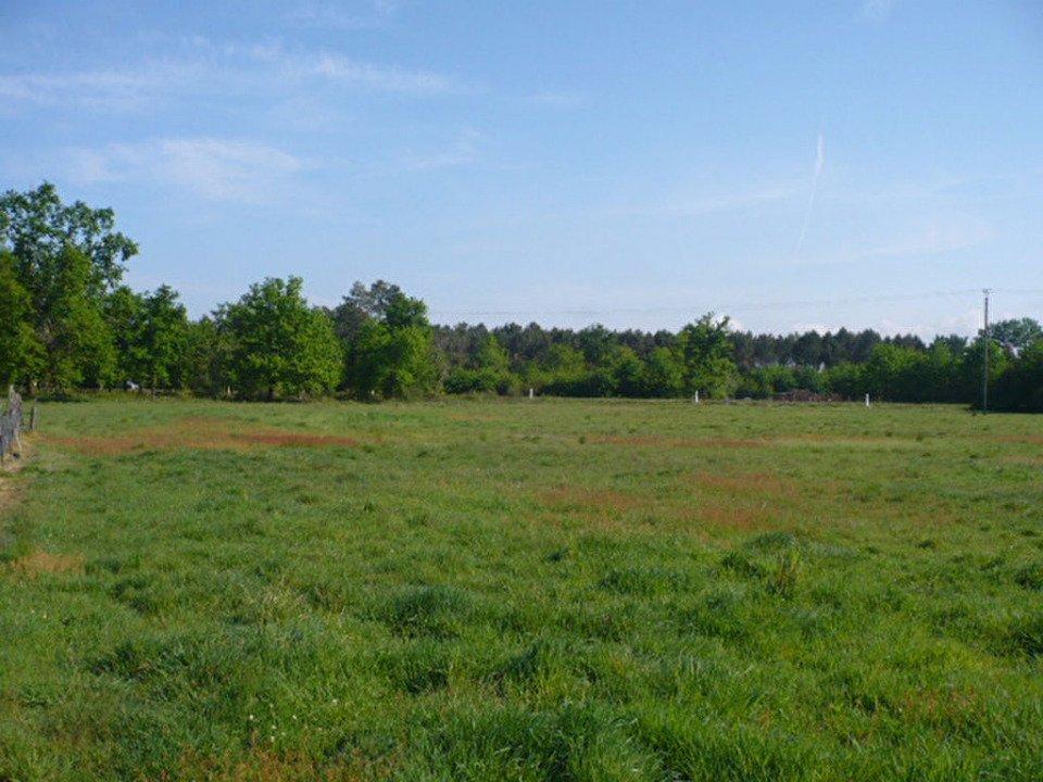 Terrains du constructeur MAISONS FRANCE CONFORT • 1109 m² • CALMONT