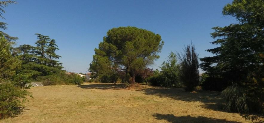 Terrains du constructeur MAISONS FRANCE CONFORT • 506 m² • LABARTHE SUR LEZE