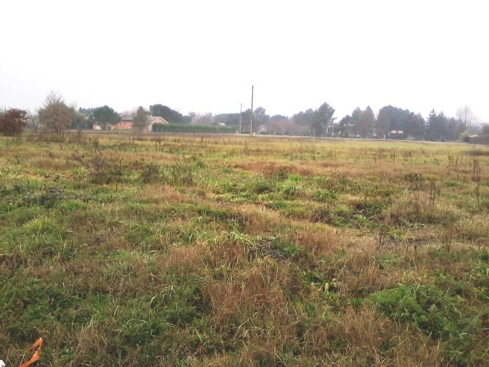 Terrains du constructeur MAISONS FRANCE CONFORT • 1600 m² • SAINT NAUPHARY