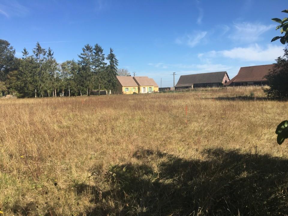 Terrains du constructeur MAISONS FRANCE CONFORT • 1100 m² • NERON
