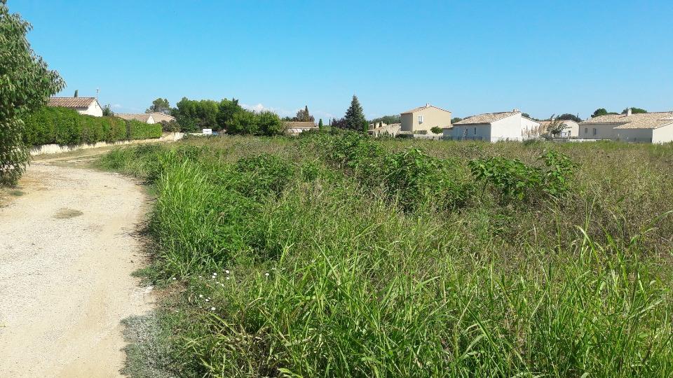 Terrains du constructeur MAISONS FRANCE CONFORT • 500 m² • LAUDUN