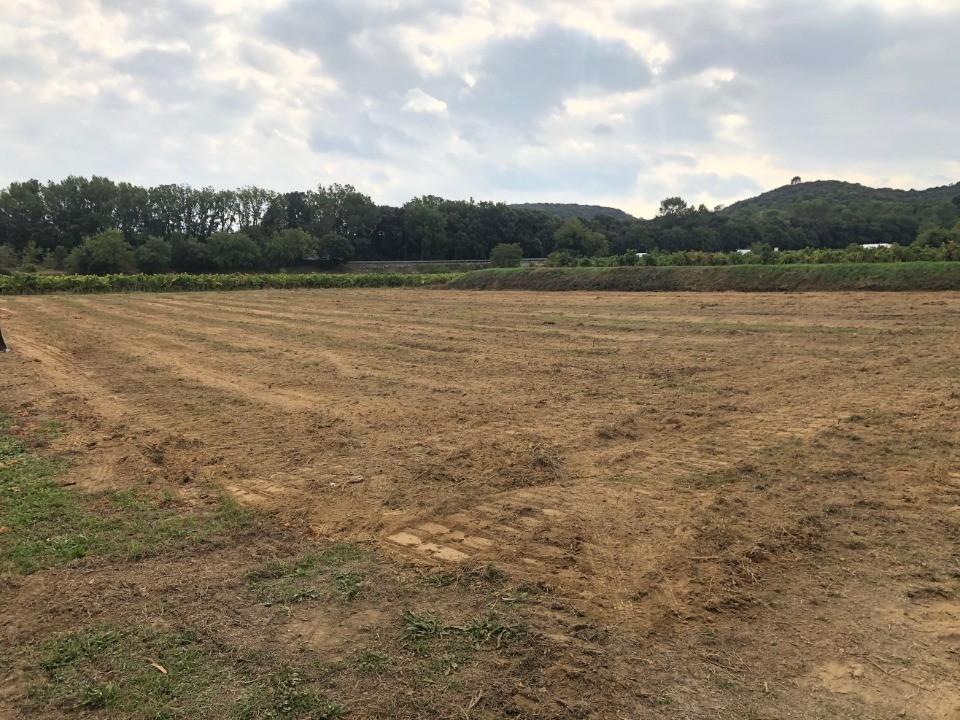 Terrains du constructeur MAISONS FRANCE CONFORT • 500 m² • GAUJAC
