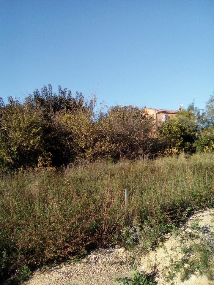 Terrains du constructeur LES MAISONS DE MANON • 700 m² • CHATEAUNEUF DU PAPE