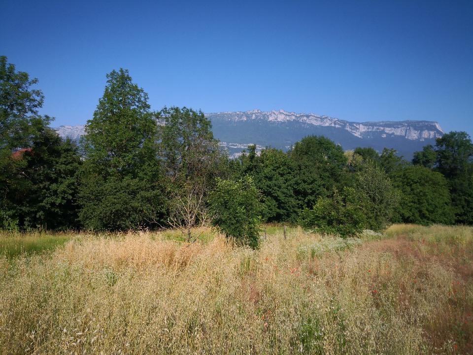 Terrains du constructeur MAISONS FRANCE CONFORT • 500 m² • SAINT MAXIMIN