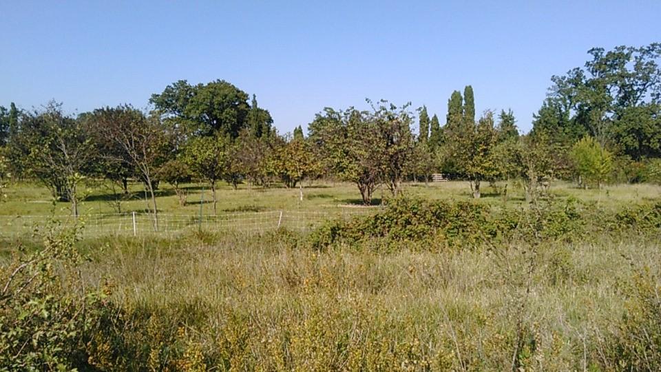 Terrains du constructeur LES MAISONS DE MANON • 850 m² • SARRIANS