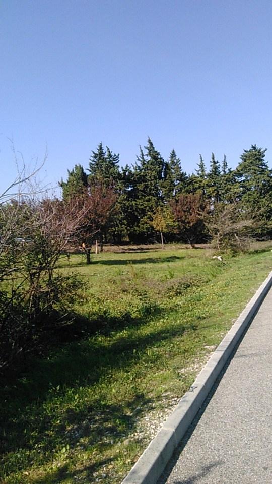 Terrains du constructeur MAISONS DE MANON • 1200 m² • SORGUES