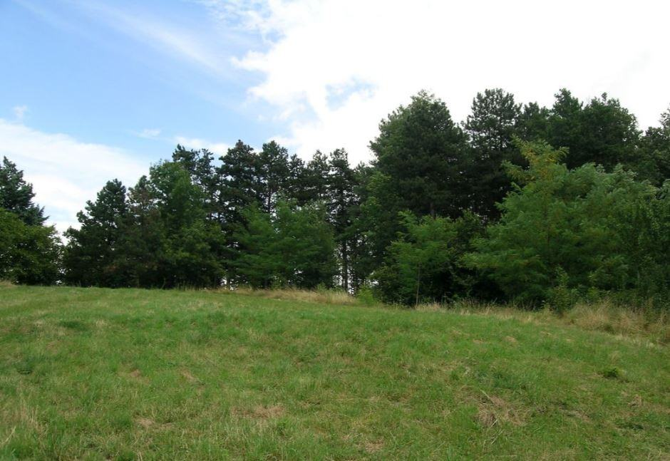 Terrains du constructeur OC RESIDENCES - MAZAMET • 2000 m² • PAYRIN AUGMONTEL