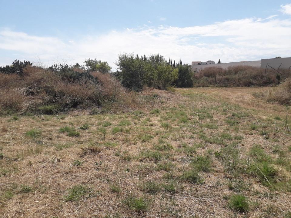 Terrains du constructeur OC RESIDENCES - NARBONNE • 499 m² • NARBONNE