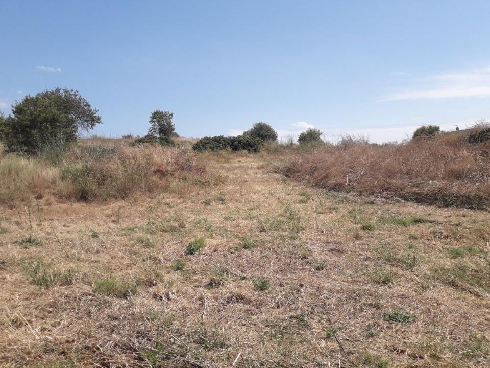 Terrains du constructeur OC RESIDENCES - NARBONNE • 347 m² • NARBONNE