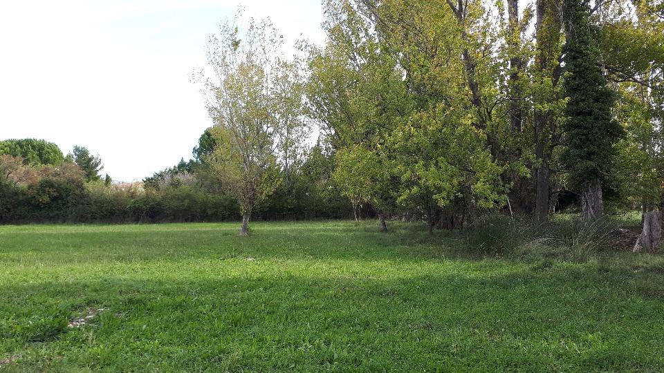 Terrains du constructeur MAISONS FRANCE CONFORT • 700 m² • SALON DE PROVENCE