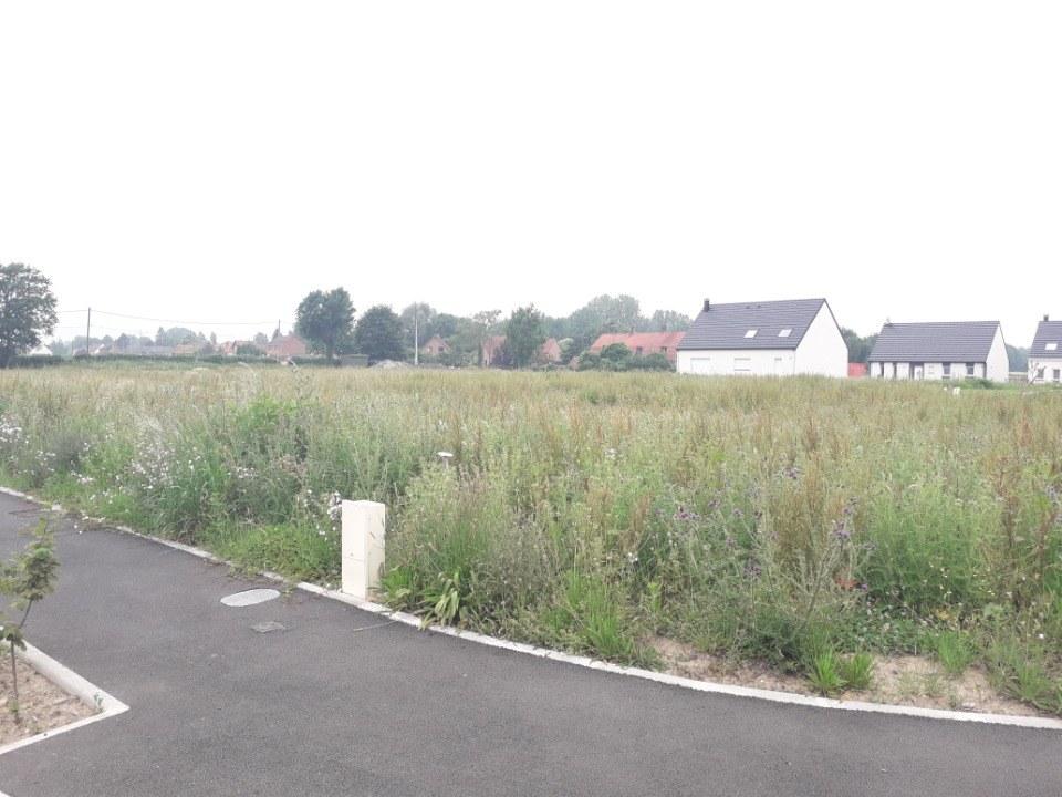 Terrains du constructeur MAISONS FRANCE CONFORT • 658 m² • QUIESTEDE