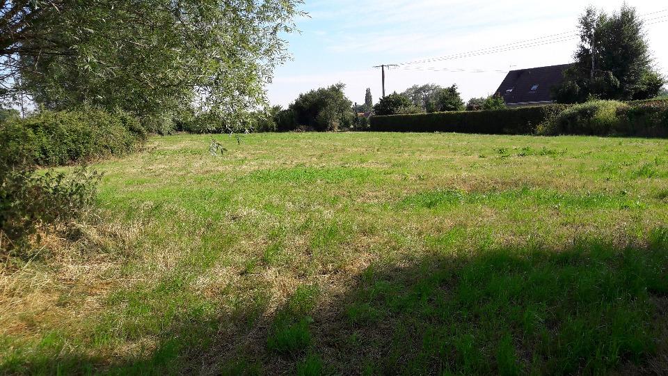 Terrains du constructeur MAISONS FRANCE CONFORT • 509 m² • LEDERZEELE