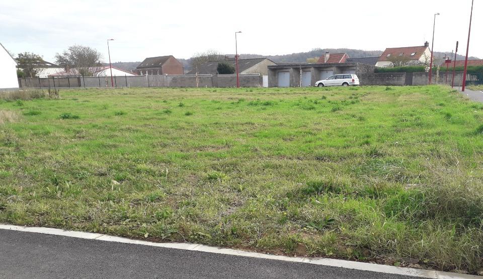 Terrains du constructeur MAISONS FRANCE CONFORT • 634 m² • SAINT OMER
