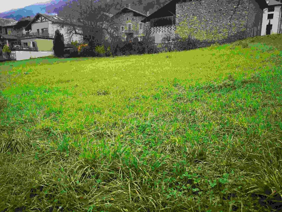 Terrains du constructeur MAISON FRANCE CONFORT • 812 m² • LA TRINITE