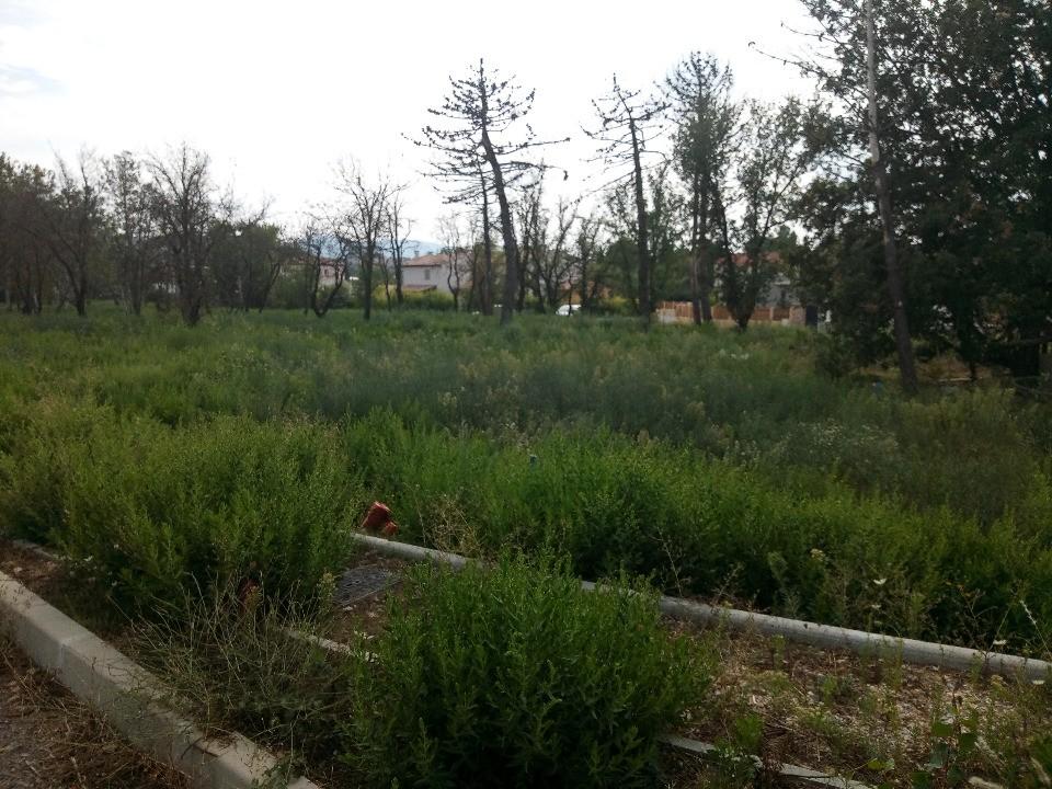 Terrains du constructeur LES MAISONS DE MANON • 1100 m² • GRIMAUD