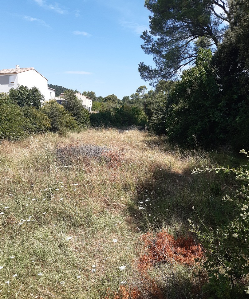 Terrains du constructeur LES MAISONS DE MANON • 350 m² • BRIGNOLES