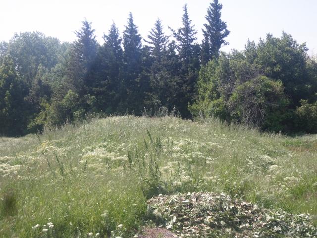 Terrains du constructeur VILLADIRECT LE PONTET • 308 m² • ENTRAIGUES SUR LA SORGUE
