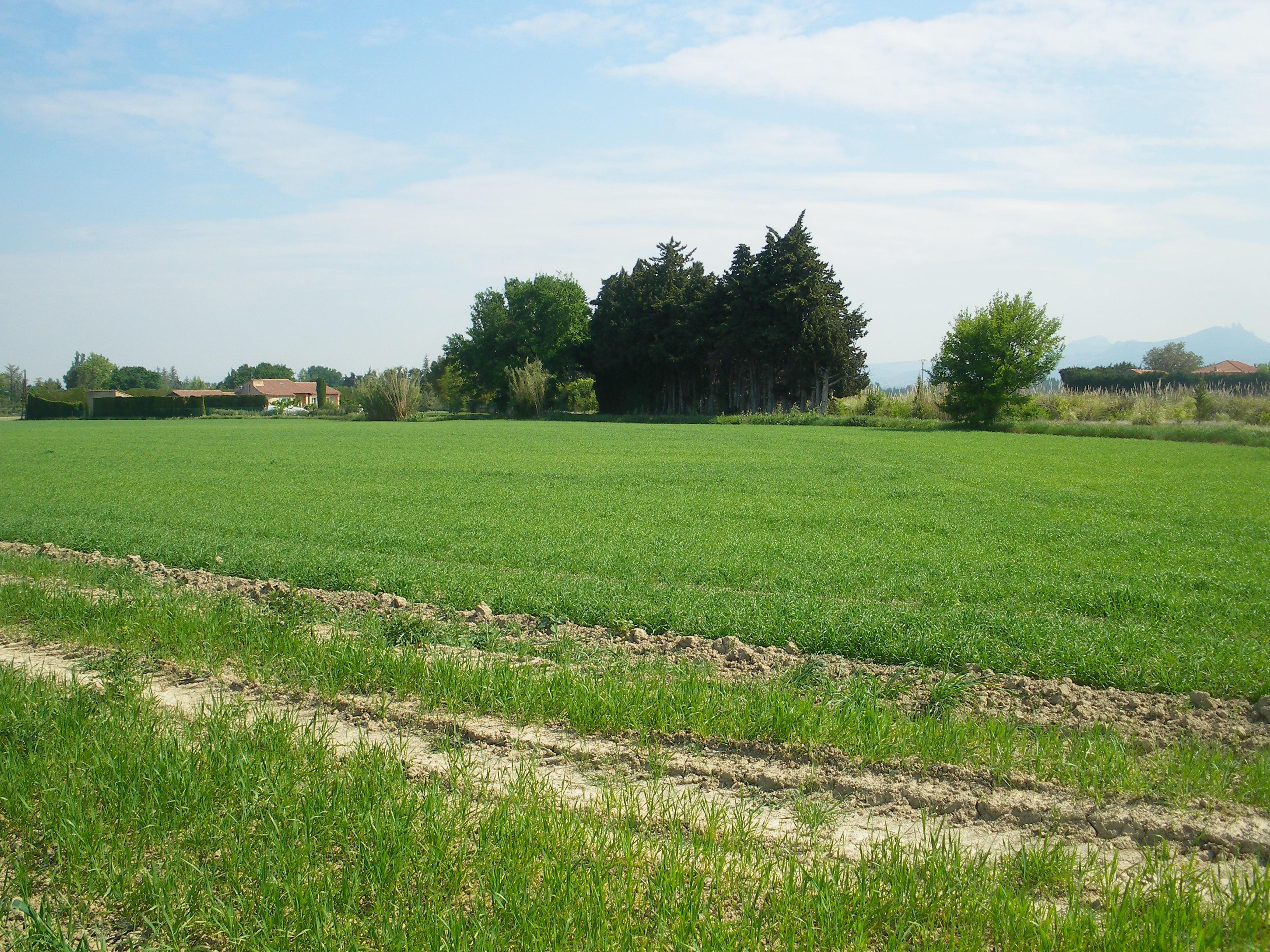 Terrains du constructeur VILLADIRECT LE PONTET • 602 m² • L'ISLE SUR LA SORGUE