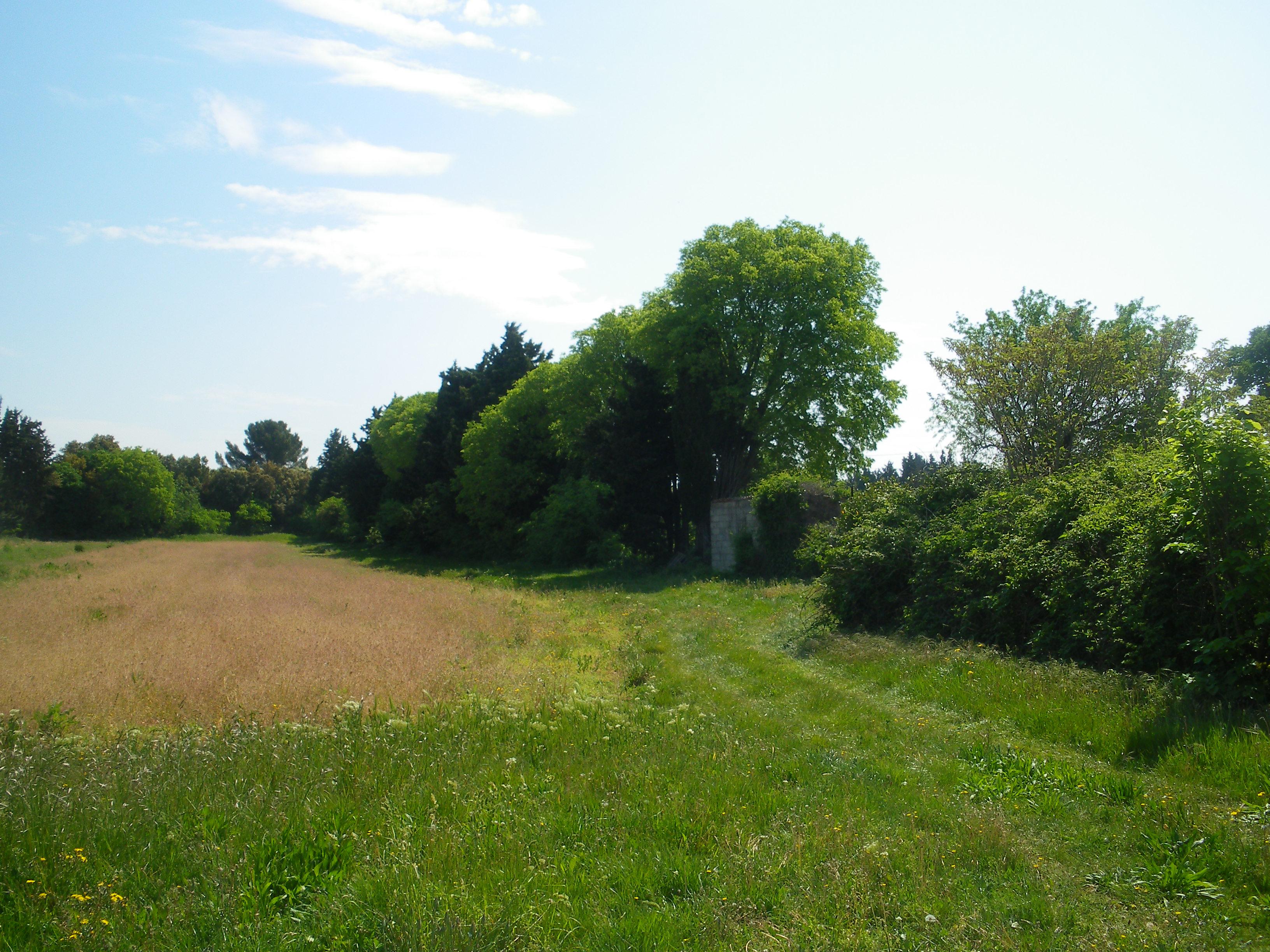Terrains du constructeur VILLADIRECT LE PONTET • 374 m² • BONNIEUX
