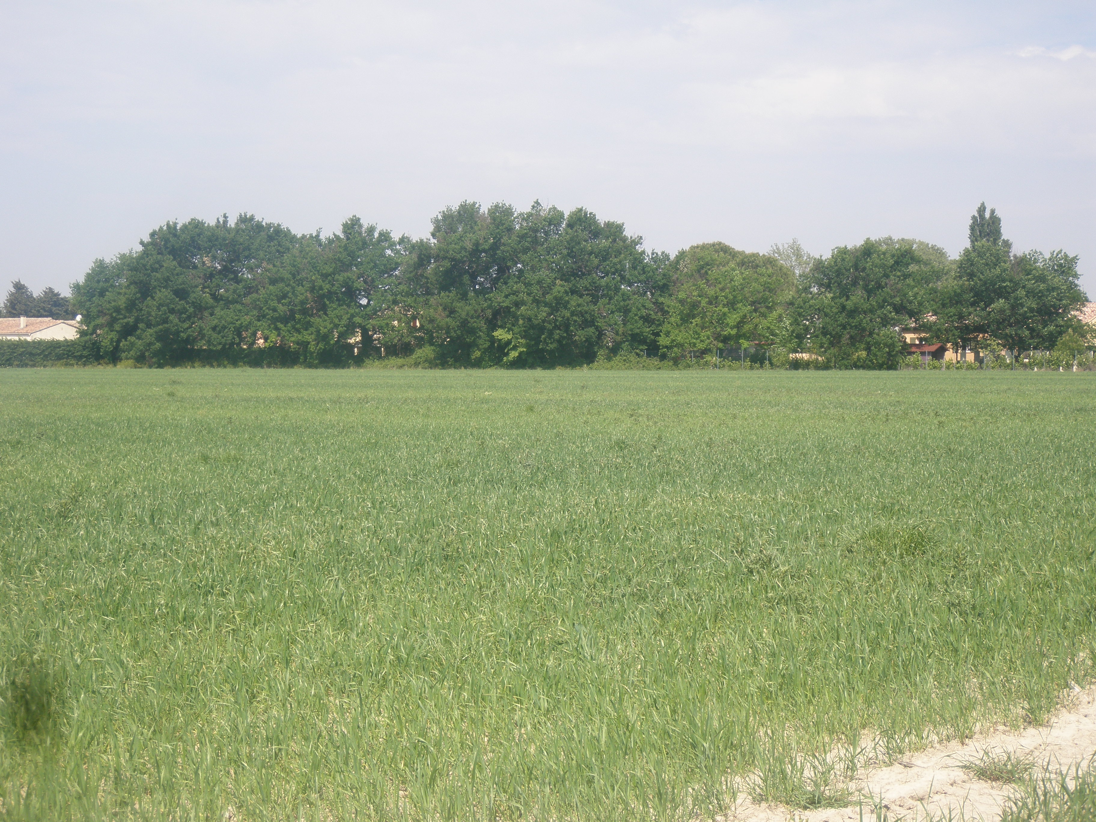 Terrains du constructeur VILLADIRECT LE PONTET • 563 m² • ORANGE