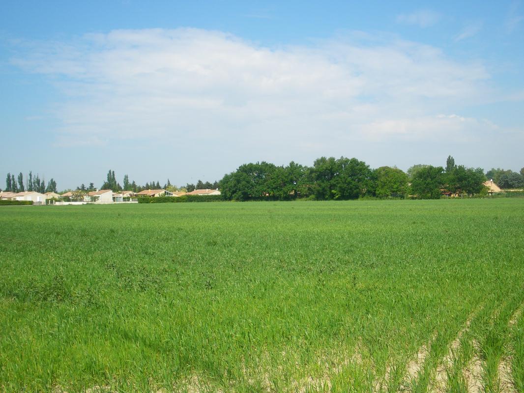 Terrains du constructeur AVENIR TRADITION • 600 m² • GARGAS