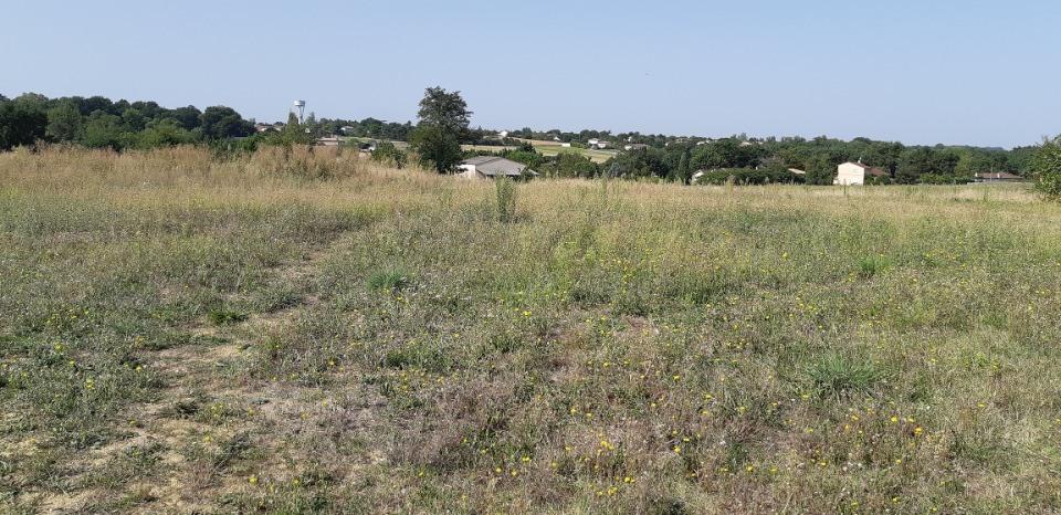 Terrains du constructeur MAISONS FRANCE CONFORT • 427 m² • LAPEYROUSE FOSSAT