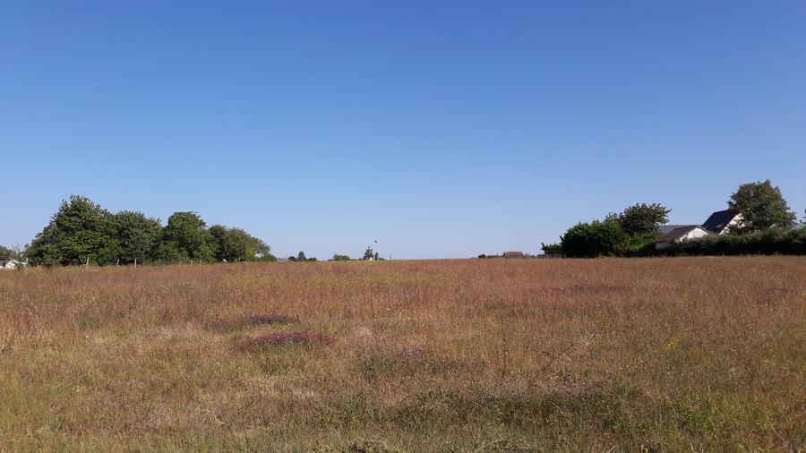 Terrains du constructeur NEGOCIM • 788 m² • FONDETTES