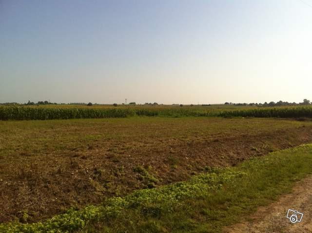 Terrains du constructeur MAISONS ARLOGIS • 441 m² • SAINT SAUVEUR D'AUNIS