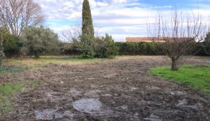 Terrains du constructeur MAS PROVENCE • 1774 m² • MAILLANE
