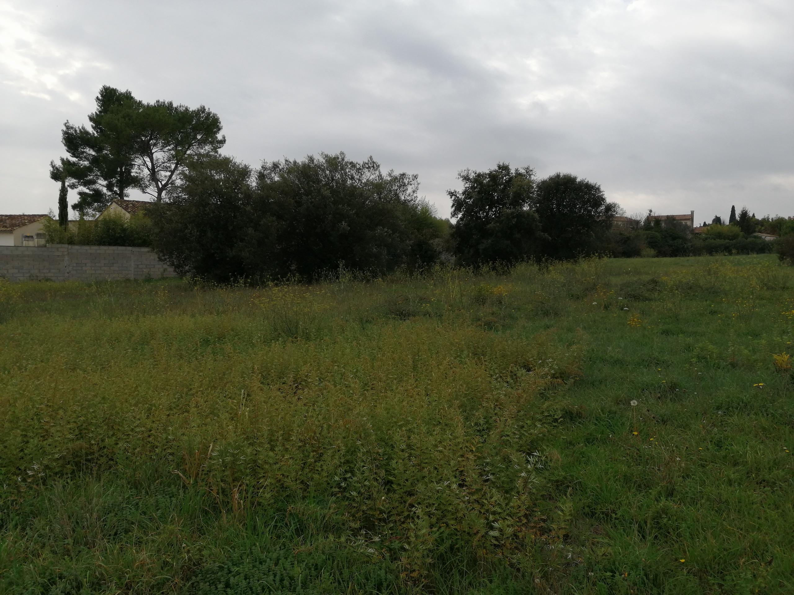 Terrains du constructeur MAS PROVENCE • 840 m² • UZES