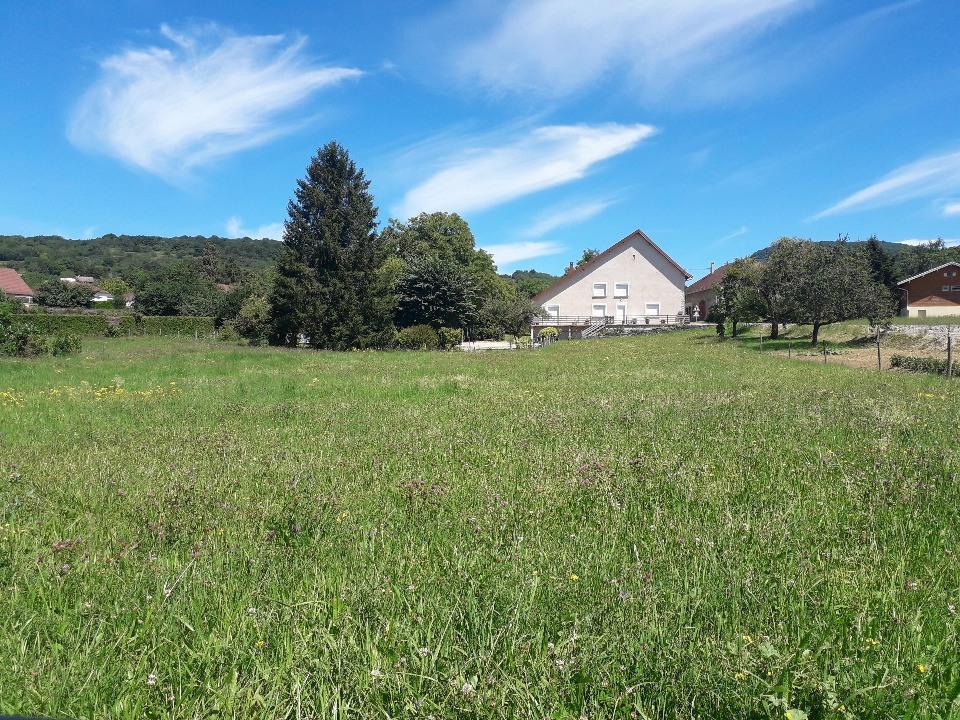 Terrains du constructeur MAISONS FRANCE CONFORT • 1100 m² • LES ARSURES