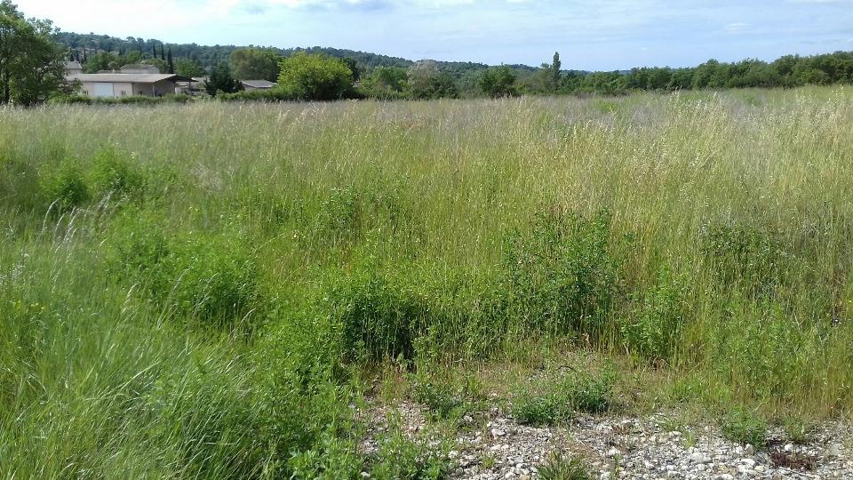 Terrains du constructeur MAISONS FRANCE CONFORT • 1391 m² • MONS