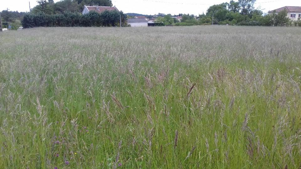 Terrains du constructeur MAISONS FRANCE CONFORT • 450 m² • SAINT PRIVAT DES VIEUX