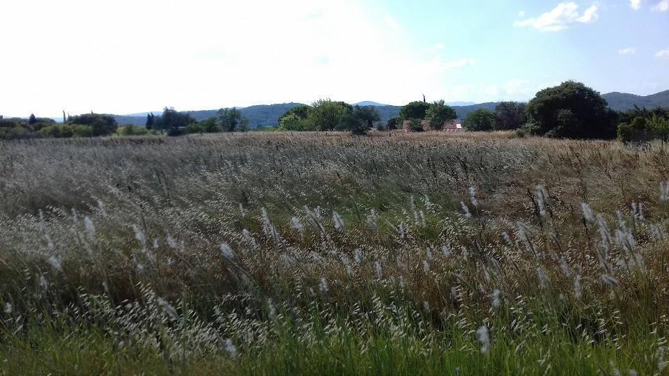 Terrains du constructeur MAISONS FRANCE CONFORT • 400 m² • CRESPIAN