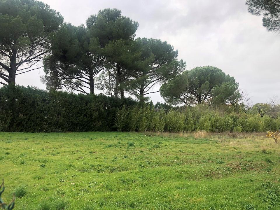 Terrains du constructeur LES MAISONS DE MANON • 300 m² • ANIANE