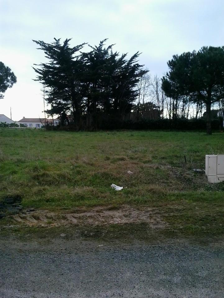Terrains du constructeur LMP CONSTRUCTEUR • 384 m² • SALLERTAINE