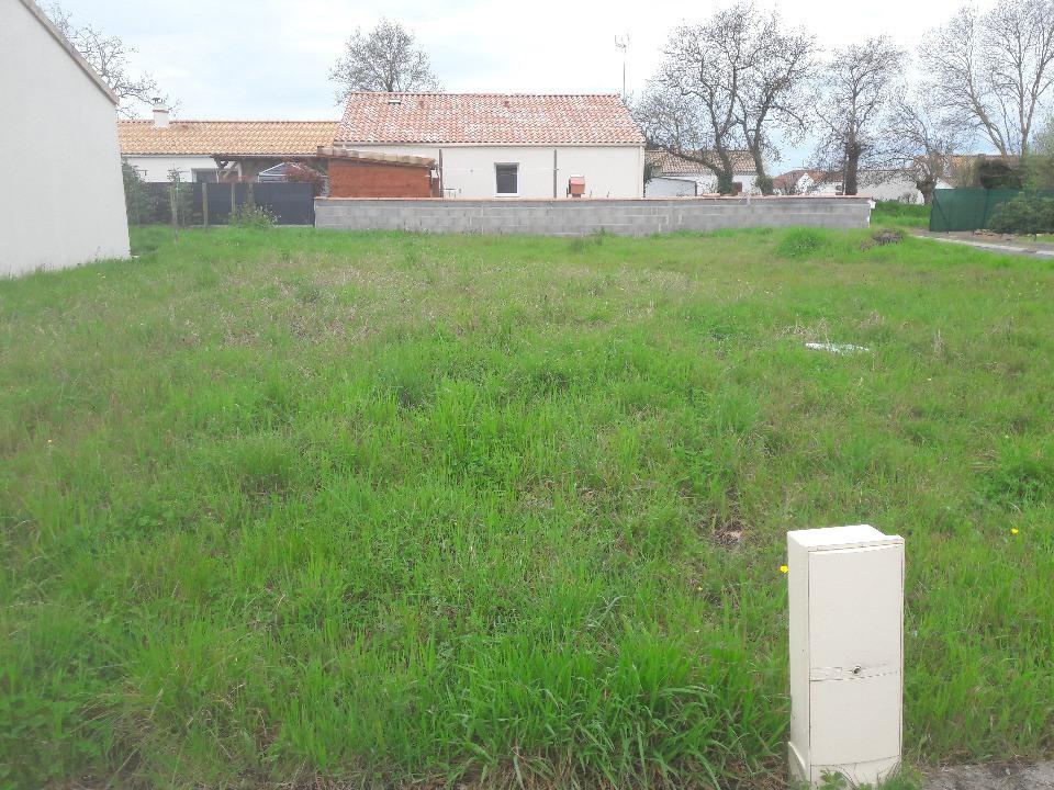 Terrains du constructeur LMP CONSTRUCTEUR • 426 m² • BEAUVOIR SUR MER