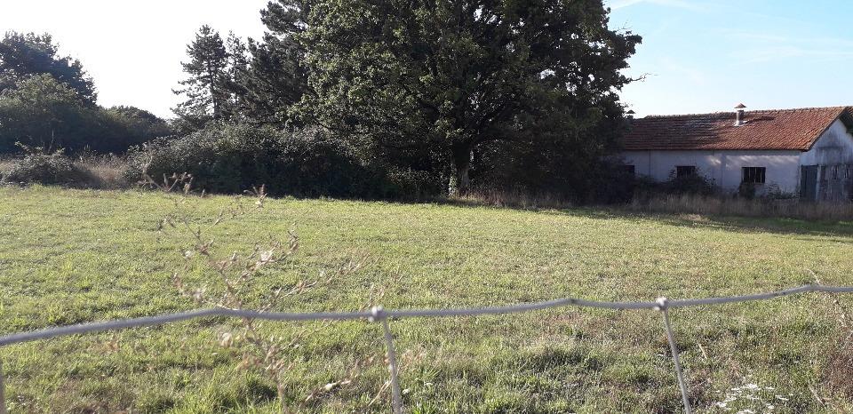 Terrains du constructeur LMP CONSTRUCTEUR • 368 m² • AIZENAY