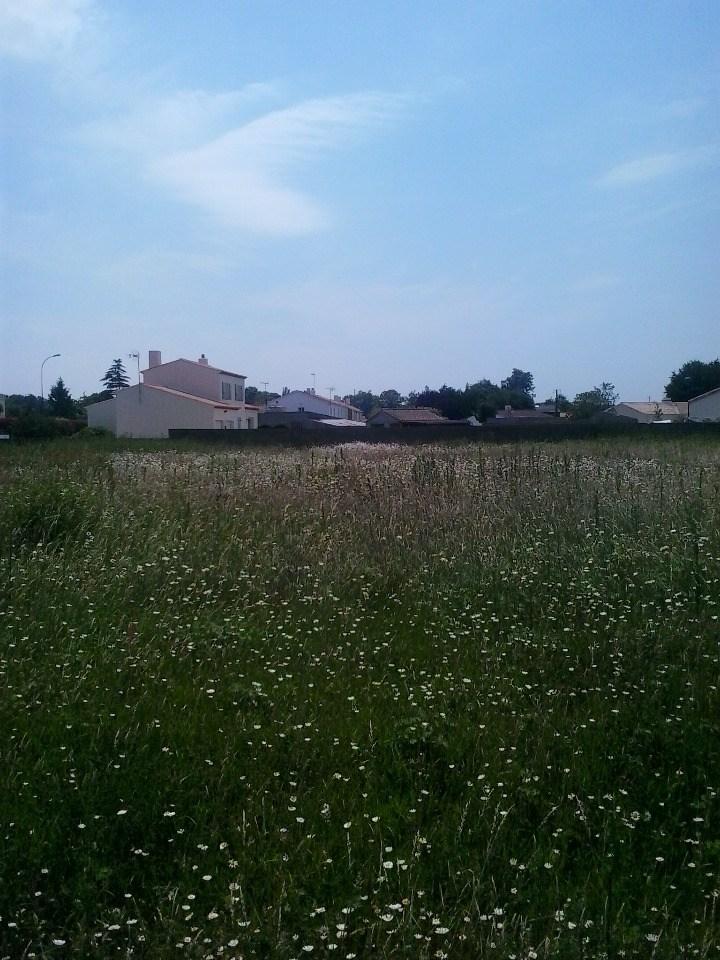 Terrains du constructeur LMP CONSTRUCTEUR • 419 m² • SOULLANS