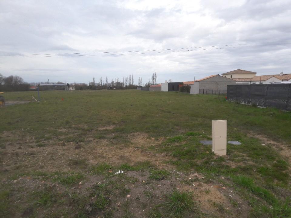 Terrains du constructeur LMP CONSTRUCTEUR • 432 m² • BOIS DE CENE