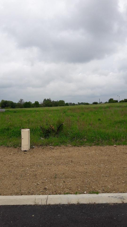 Terrains du constructeur LMP CONSTRUCTEUR • 588 m² • COEX
