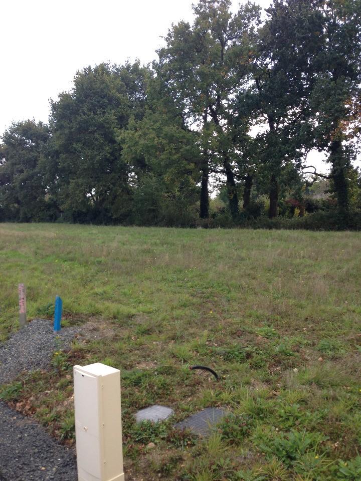 Terrains du constructeur LMP CONSTRUCTEUR • 460 m² • GRAND LANDES