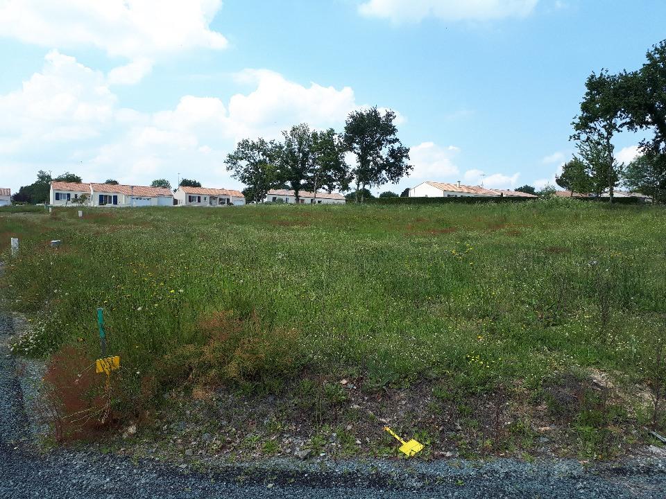 Terrains du constructeur LMP CONSTRUCTEUR • 461 m² • LA CHAPELLE HERMIER