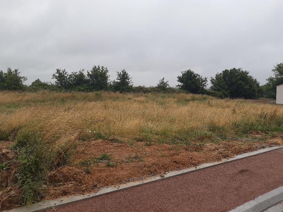 Terrains du constructeur LMP CONSTRUCTEUR • 565 m² • BEAUFOU